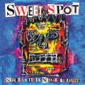 Sweet Spot cover blue.jpg